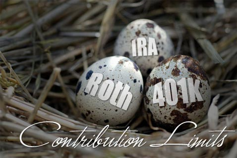 2011 Roth IRA Contribution Limit And Phaseouts
